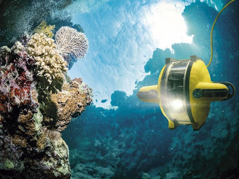 korallrev.jpg